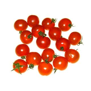 Tomaten | Cherry