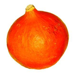 Hokkaido Kürbis, orange