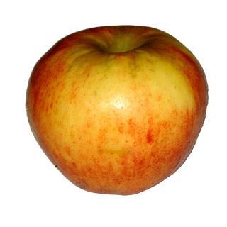 "Apfel ""Cripps Pink"""