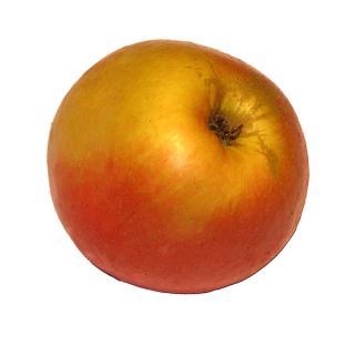 "Apfel ""Marnica"""
